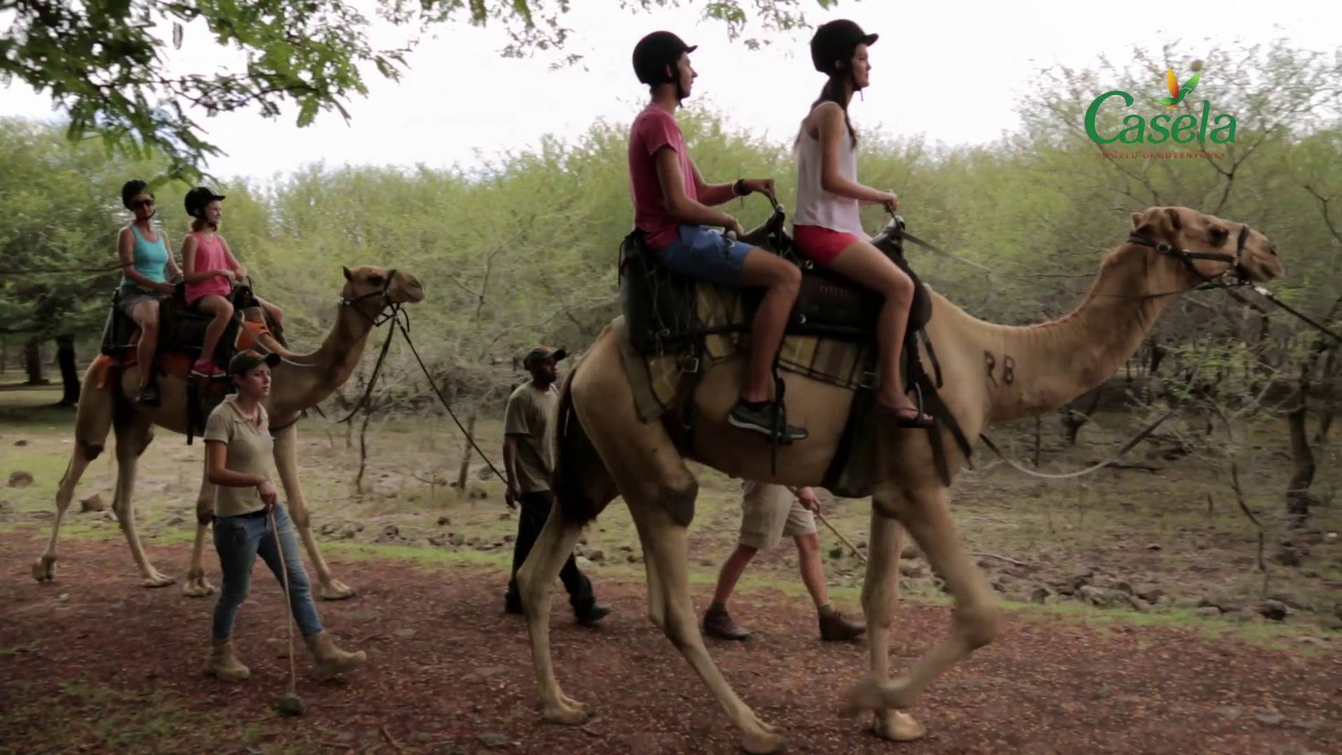 Camel Ride Safari at Casela