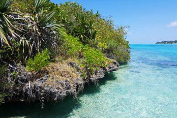 Benitiers island