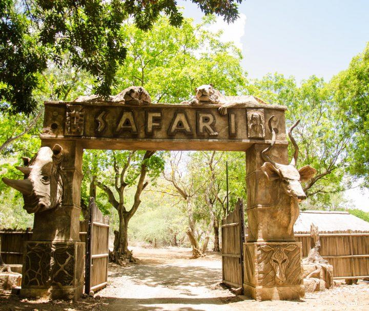 archway Safari 2